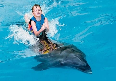 Boy playing with dolphin in Dubai Dolphinarium