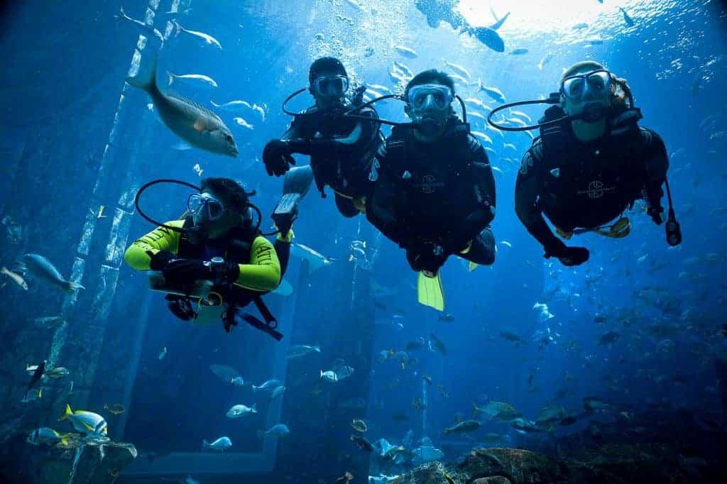 Scuba Dive at the Dubai Aquarium