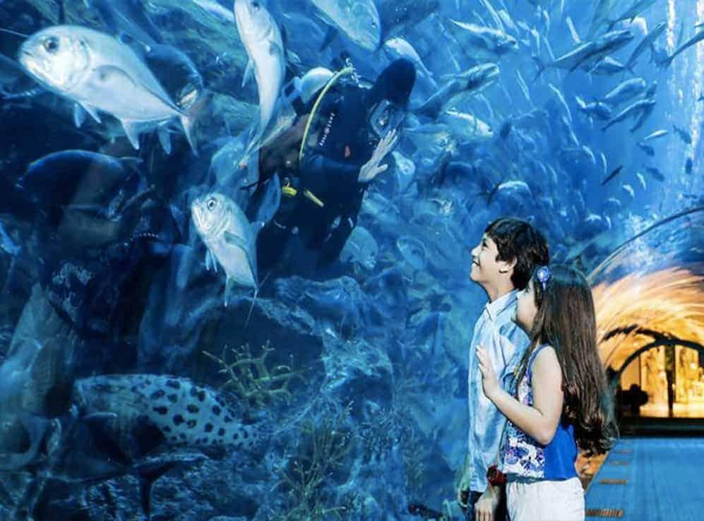 Kid's Entertainment at the Dubai Aquarium