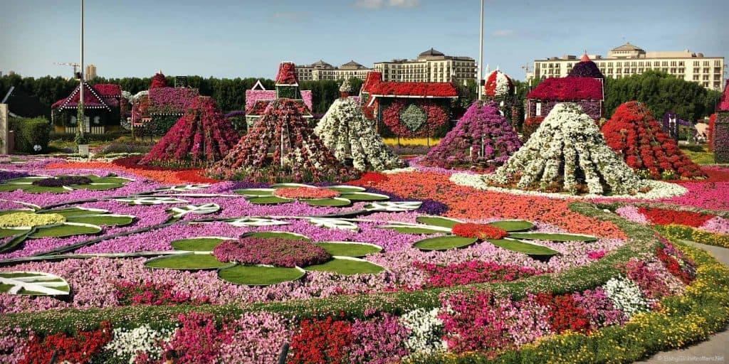 Miracle Garden Million Blooms