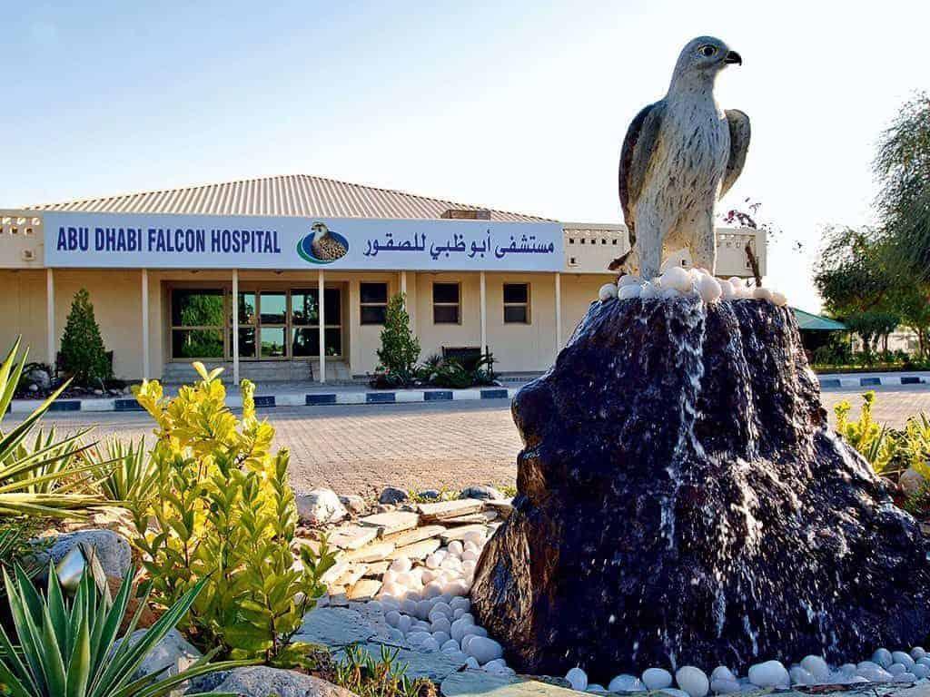 Famous Falcon Hospital of Abu Dhabi